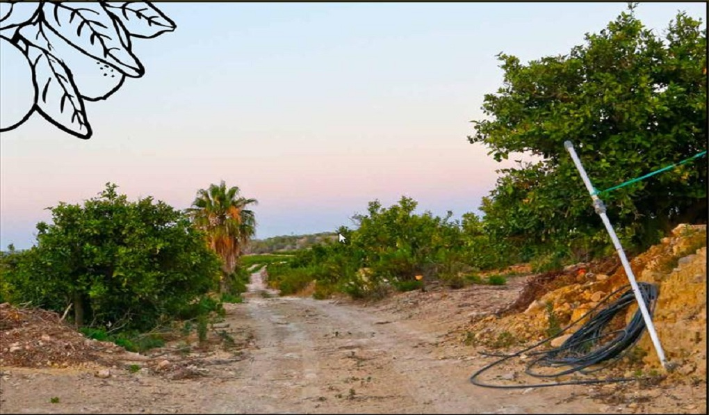 Ref: NTE001 Country Land for sale in Algorfa